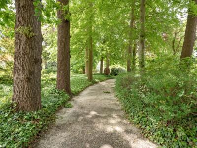 Centraal gelegen in een groene omgeving